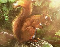 Squirrel hideout