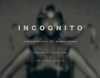 Steam Punk - Incognito