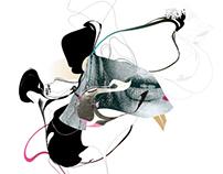 Collage/ Digital art / Illustration