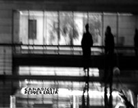 Gamaricote - Herden Lollia / 1997 - 2000