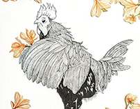 Rooster01