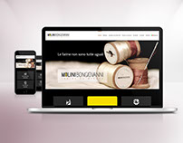 web site - wordpress - responsive