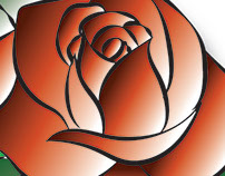 rose illustrator