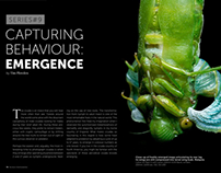 Capturing Behaviour: Emergence