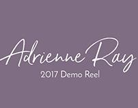2017 Demo Reel