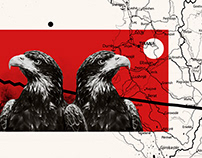 Balkan Insight   editorial illustrations
