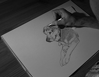 Just drawing (35 seconds time-lapse)