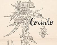 Corinto- Manual ilustrado