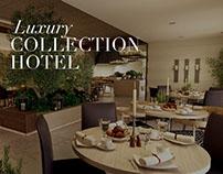 Luxury Collection Hotel | Jordan