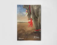 Facebook Promotional Poster (Parkkadi Pooram 2017)