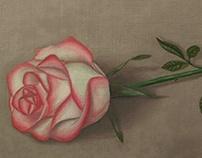 """""""Rose flower"""""""