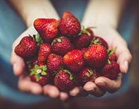 Sweet Strawberries by Nicole Monturo
