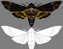 Death Head Hawkmoth - 3D Model