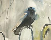Jane's Crow