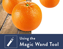 Photoshop Magic Wand Tool: How to Select and Mask