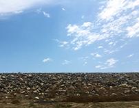 A3 - Landscape