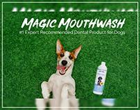 Amazon A+Content Design for Pet Product