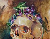 Shroom Skull Sketch