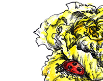 """Yellow rose and ladybug"""