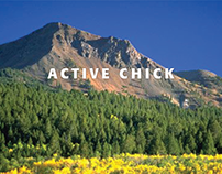 Active Chick Brand Identity