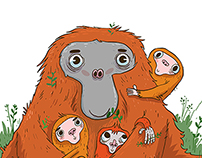 Little Orangutans