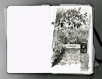 Spring Sketchbook I