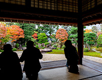 A beautiful garden photo collection in Japan