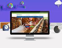 Diam Grain - Website Design