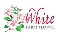 The White Farm Flower Catalogue
