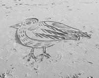 Sandbirds