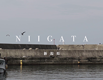 Niigata Cinematic Travel Video