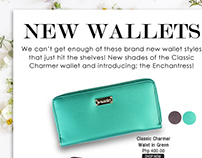 New Wallets : Newsletter Layout Design