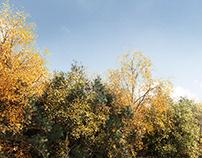 Chelsea 88 // Landscape CGI Illustration
