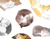 2014 Book illustration-貓語教科書