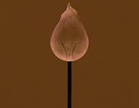 Match Bulb