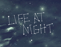 Life at Night