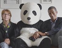 Panda David