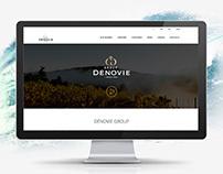 Website DenoviGroup - great for presentations.