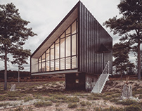 House in nature project render vray next