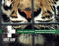 Lost Leaf magazine advertisements and Logo Design