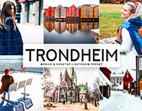 Free Trondheim Mobile & Desktop Lightroom Preset