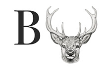 Buck Films - Logo