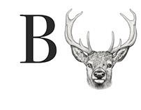 Buck Films - Logo