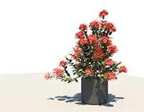 Tree model!