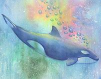 Little killer whale