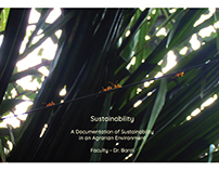 Sustainability - Case Study of an Agrarian Environment