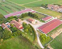 Azienda Agricola Puliti - Uova Biologiche Italiane