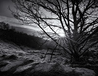 Sunrise in Harden [monochrome]