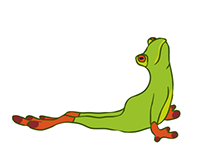Frogs Doing Yoga