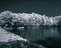 2015 Infrared - First Batch